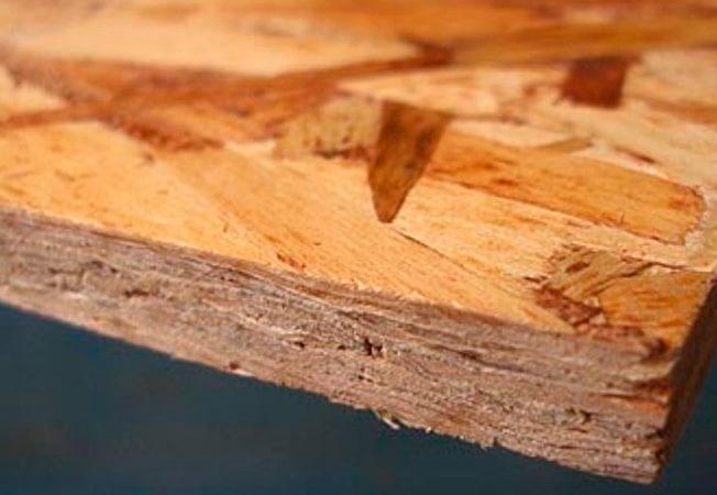 Las patologías de la madera causadas por hongos