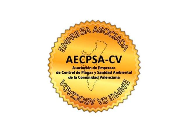 Empresa Asociada AECPSA-CV